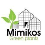 Mimikos Green Plants